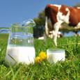 Технологии производства молока - промышленное оборудование для его переработки