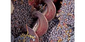 Бункер-питатель для приемки винограда