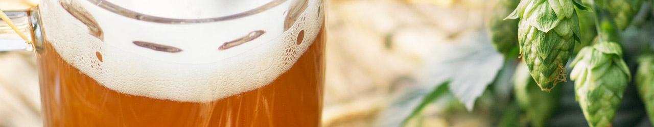 Хмель в пивоварении