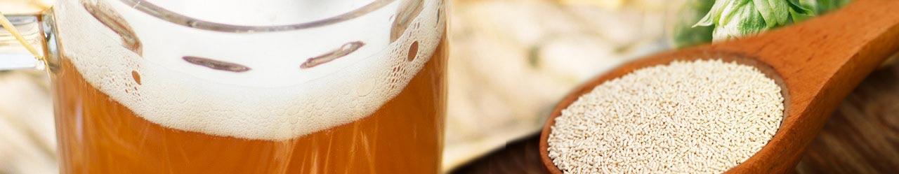 Дрожжи для пивоварения